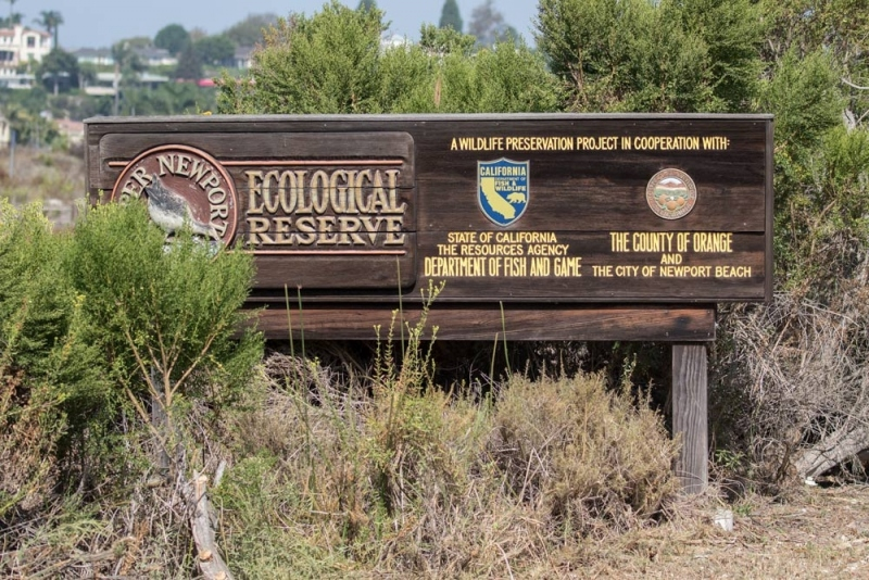 Ecological Reserve_C8A4222