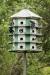 bird-house_C8A2988